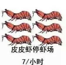 皮皮虾是什么梗,这几天怎么那么火? 泡面说 第7张